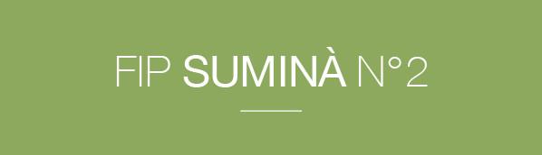 Le FIP Suminà n°2 : c'est parti !