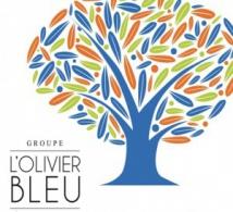 L'OLIVIER BLEU